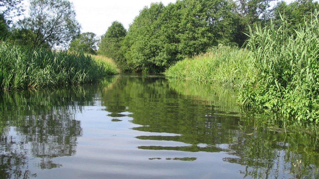 restauration entretien riviere génie civil végétal écologique