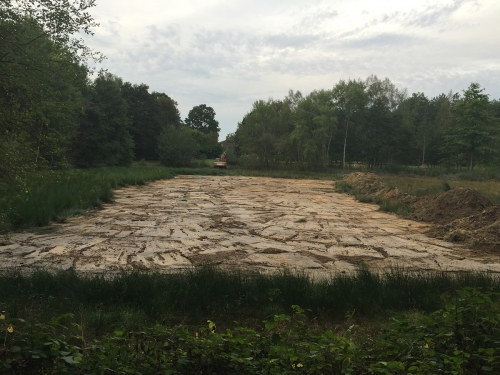 Blot entretien rivières Curage d'un étang en Sologne mise en andain des vases une bordure de jonc est laissée telle quelle pour préserver la biodiversité